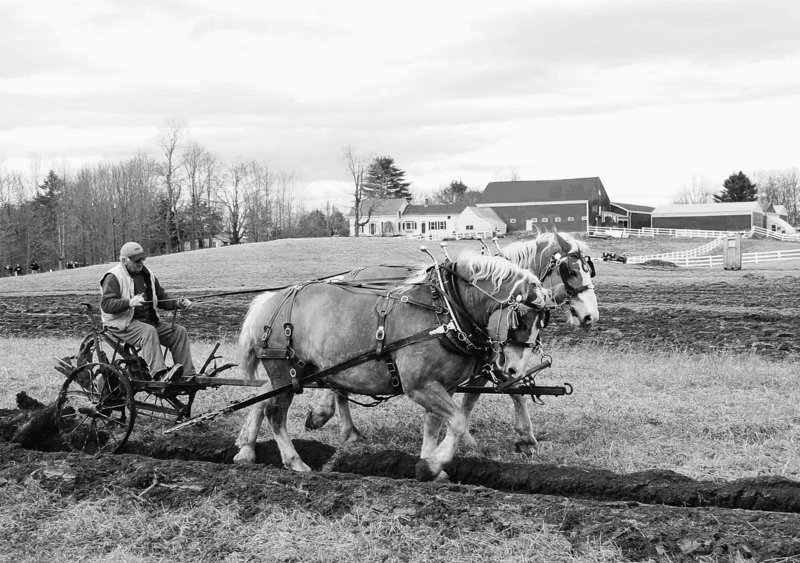 Skilled plowman J. Luther Gray and a team of draft horses demonstrate how to cut deep sod to prepare the ground for planting at the 2009 Plow Day at Skyline Farm in North Yarmouth. Skyline Farm will host a free plowing demonstration Saturday, starting at 9 a.m.