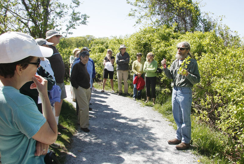 Rick Churchill, right, a horticulturalist and former Cape Elizabeth tree warden, discusses the invasive plant bittersweet while leading an informational walk Sunday about a proposed arboretum for Fort Williams Park.