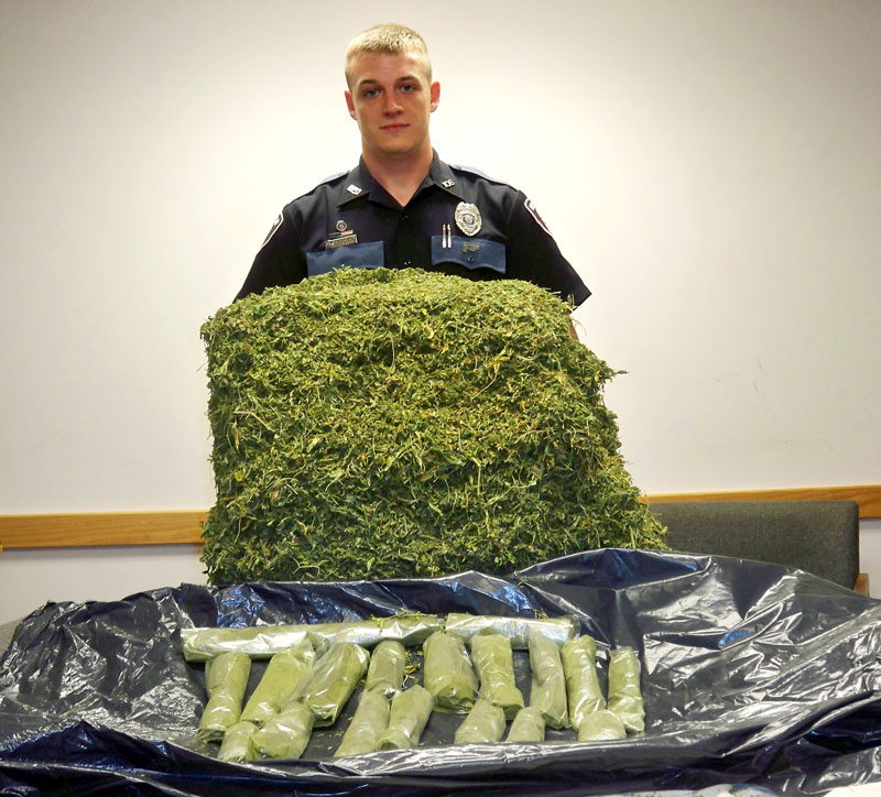 Bridgton Officer T.J. Reese poses with marijuana seized in raid.