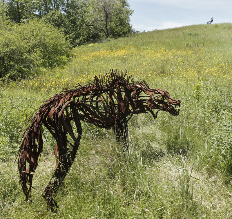 Sculptures by artist Wendy Klemperer roam Maine Audubon at Gilsland Farm in Falmouth. There are 22 sculptures placed along the trails, including elk, caribou, wolves and porcupine.