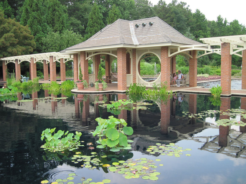 Water lilies fill the aquatic garden at the Huntsville Botanical Garden in Huntsville, Ala. – a distinct contrast to the nearby space center. The city is one of the Dozen Distinctive Destinations of the National Trust for Historic Preservation.