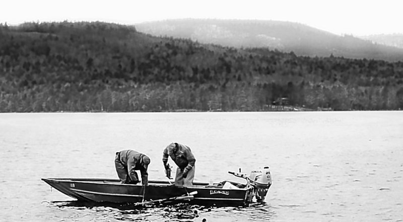 Inland Fisheries and Wildlife biologists collect a walleye on Long Pond in Belgrade this spring. A speaker at Saturday's Maine Lakes Conference says it's critical to communicate research data to people who are interested in sustaining lakes.