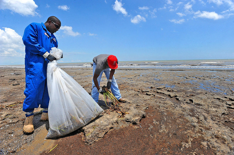 Workers Anthony Batchan, left, and Joseph Thomas pick oily seaweed off McFaddin Beach in Texas on Tuesday.