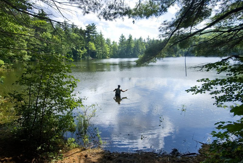 Attracting people to enjoy what Maine offers, thus boosting the economy, would be aided by a North Woods park, a reader says.