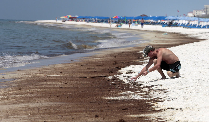 Mickal Vogt of Covington, La., uses a stick and a jar to gather tar balls that washed up on the shore in Orange Beach, Ala., in June. As the 100-day mark was passed Wednesday, the broken well has been essentially capped for two weeks, but the crisis is far from over.