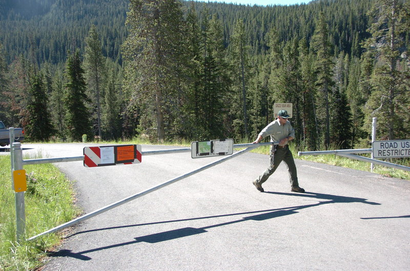 A U.S. Forest Service Employee closes the gate at the entrance to the Soda Butte Campground in Cooke City, Mont., Thursday, after a bear killed one man and injured two other people in the campground Wednesday. A mother grizzly was captured Wednesday evening at the site of the fatal attack.