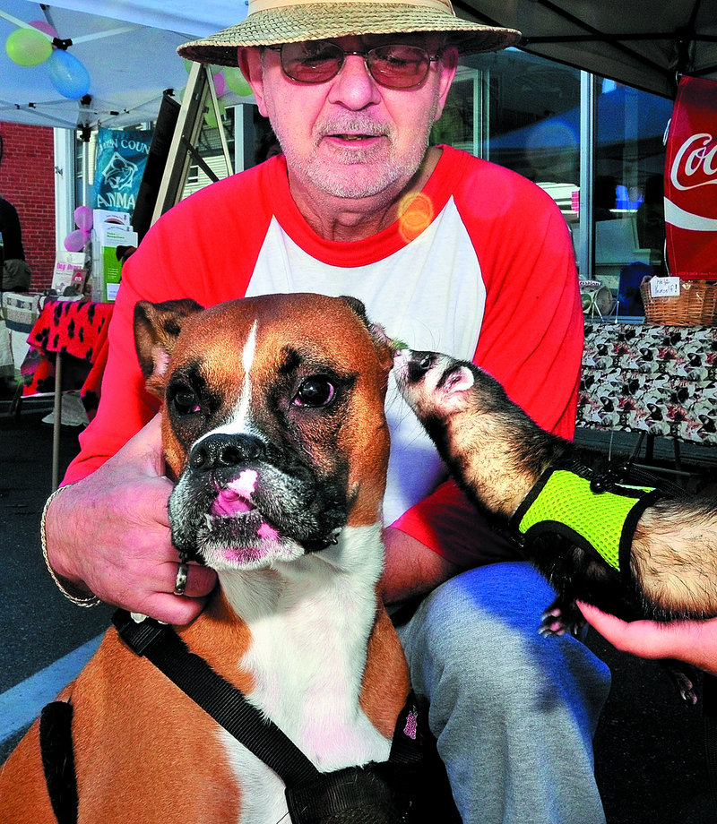 Ed Paine of Avon holds his dog Oscar, who appears to be getting an earful from a ferret held by Shannon Snyder during the two-day Summer Fest event in Farmington. Broadway is closed to traffic for vendors, artists, craftsman and entertainers today.