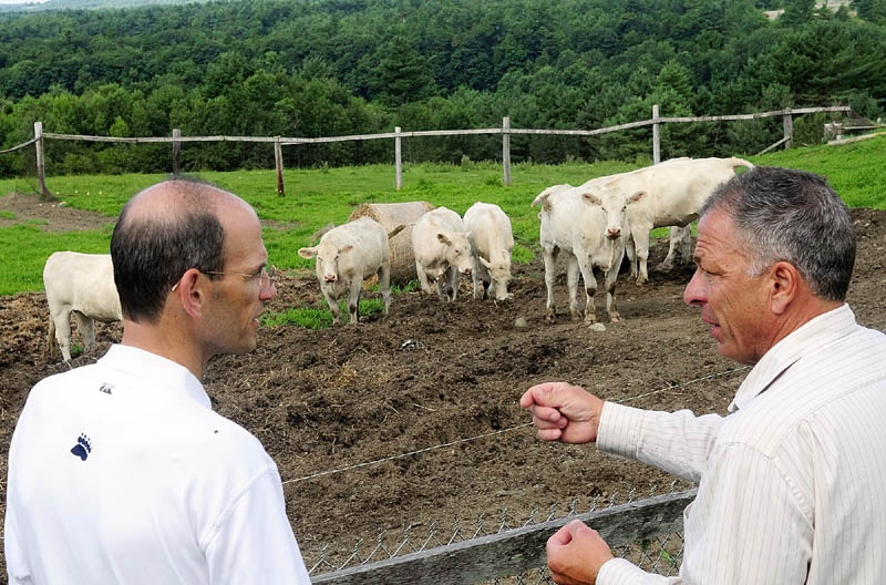 Gov. John Baldacci and Sunset Meadow Farm manager Peter Victor chat in front of a small herd of cows Monday morning during a tour of the farm in Vassalboro.