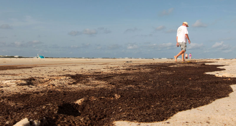 An unidentified beach walker makes his way past a stain of oil on Orange Beach, Ala., today. Oil washed ashore with the tide overnight, leaving a stain that brought out dozens of BP workers to clean.