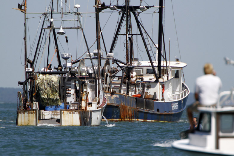 Fishing vessels gather in the Vineyard Haven harbor to draw attention to fishing regulations and oversight that some commercial fishermen say improperly regulates their industry. President Barack Obama is vacationing on the island with his family.