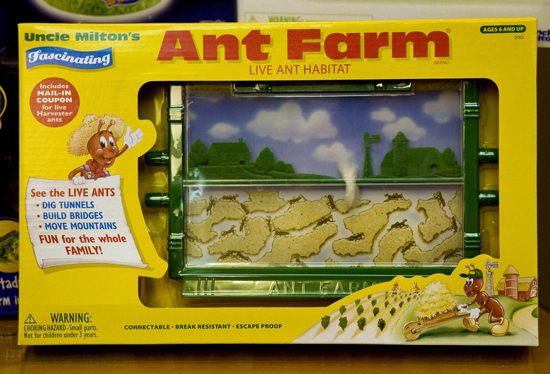 The Ant Farm is displayed at Uncle Milton Industries in Westlake Village, Calif. More than 20 million have sold since 1956, and the procedure for ordering ants has remained unchanged.