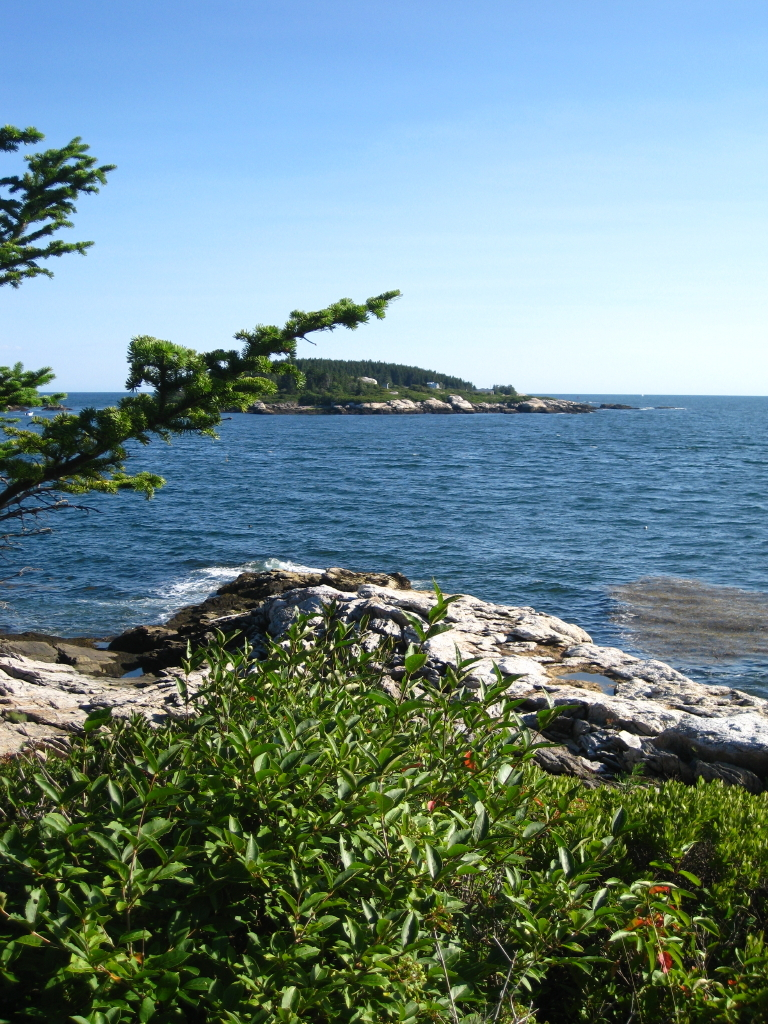 """This photograph is taken from a vantage point in Phippsburg from which John Marin may well have viewed Wood Island, visible offshore, which he depicted in the painting """"Big Wood Island,"""" now on display at the Portland Museum of Art."""