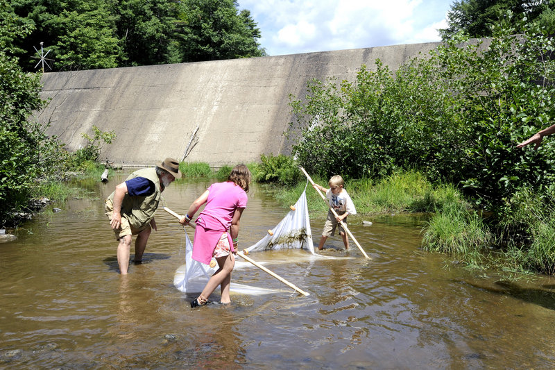 Fred Cichocki, a fisheries biologist, shows Caroline Heyburn, 9, and her brother Henry, 6, how to net small fish below the soon-to-be-removed Lower Montsweag Brook Dam on Thursday as the public toured the Wiscasset site.