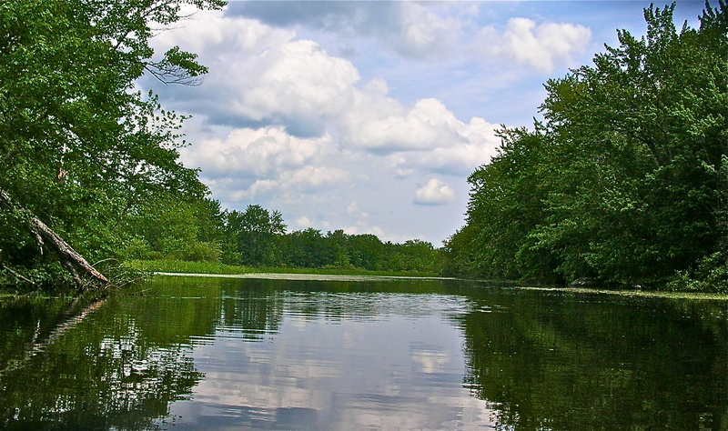 The narrow eastern reaches of Plymouth Pond take paddlers far from traffic noise and into a beautiful world of forest and marsh. The 480-acre pond is part of the Sebasticook River drainage, the Kennebec River's largest watershed.