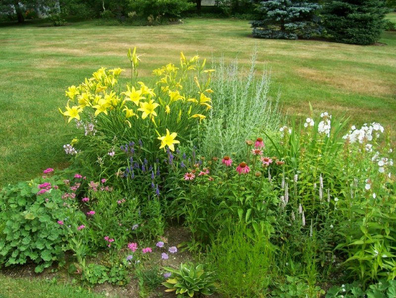 A late-season garden with different textures and colors.