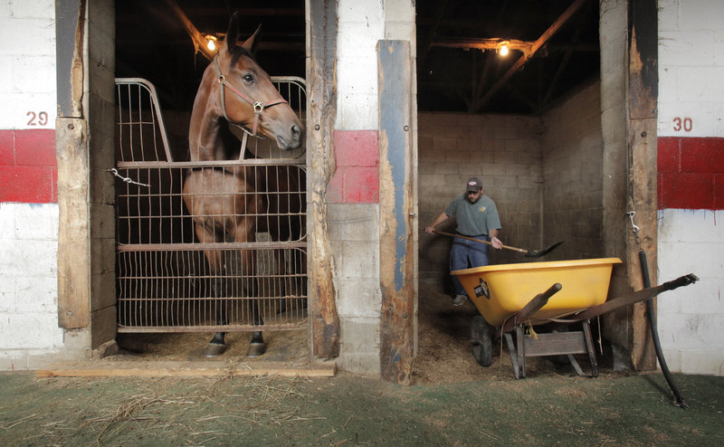 Reporter Ray Routhier cleans a stall at Scarborough Downs. He discovered it's a meticulous job.