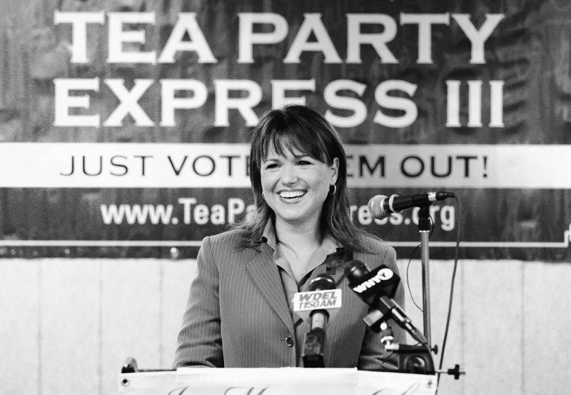 Republican Senate candidate Christine O'Donnell in Delaware is a key test of tea party influence in her race against Rep. Michael Castle.