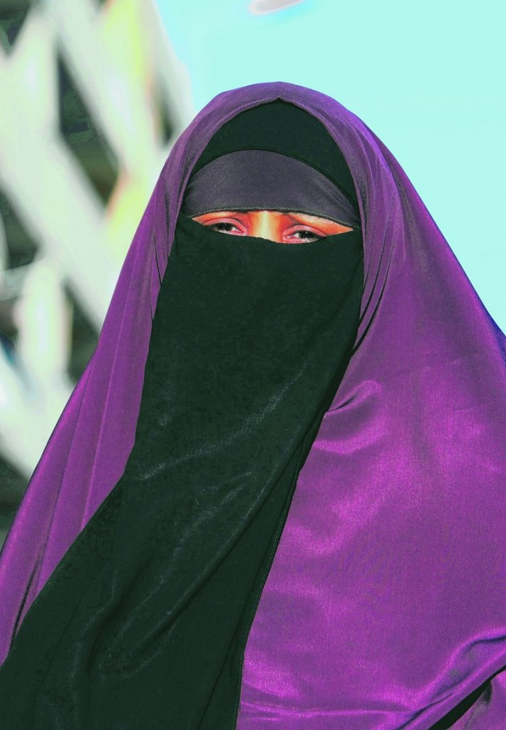 The new law does not target the burqa specifically, but can also be applied to a demonstrator or anyone who conceals his face with a hood or bandana.