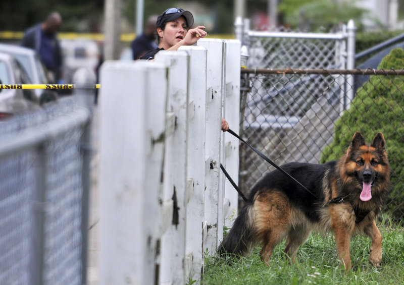 A police officer and dog search Tuesday for evidence near the scene of an early morning shooting in Boston's Mattapan neighborhood during which four people were killed. This year has seen 50 homicides as of Sept. 27, up from 40 in the same period last year.