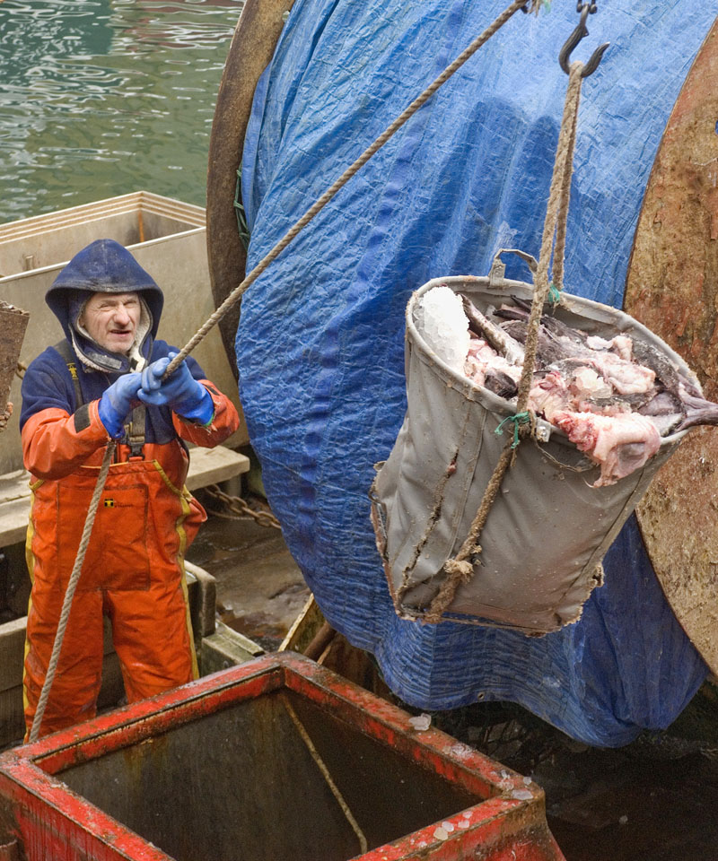 A crew member on the fishing boat