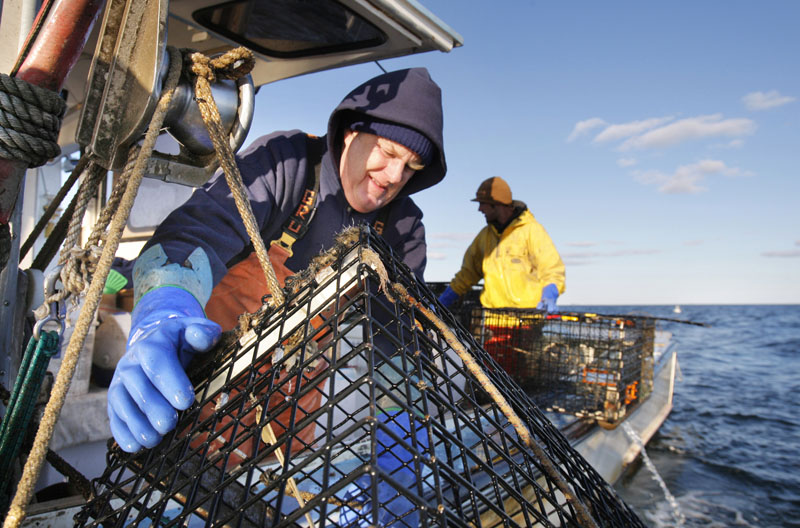 Long Island Lobsterman Mike Floyd hauls a trap aboard his lobster boat, the Kathleen II, in 2008. Floyd and other lobstermen are hurting from a steep drop in the price of lobster due to the global financial turmoil.