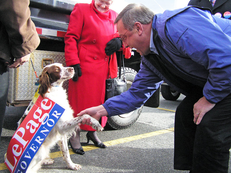 Republican gubernatorial candidate Paul LePage greets George, whose owner, Harvey Calden of Jay, was among those attending a rally Sunday at Jay Plaza.