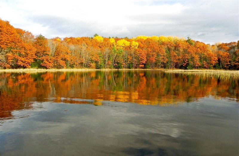 An autumn paddle along a 5-mile stretch of the Cathance River, starting in Bowdoinham, provides smooth water for foliage reflections, along with plenty of birds.