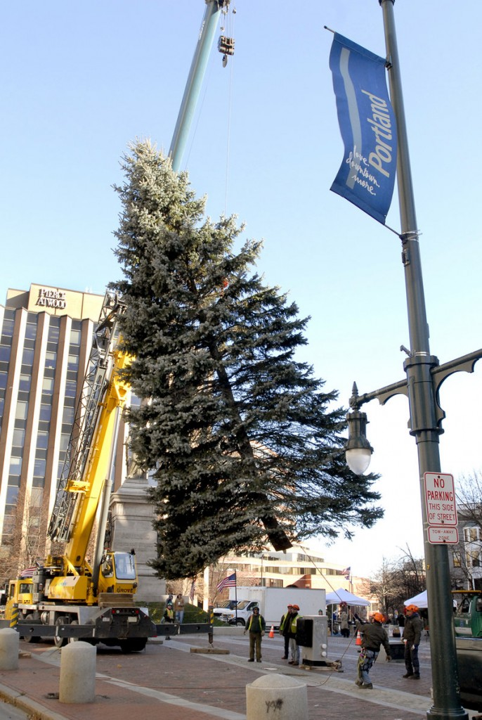 Oh, Tannenbaum! Readers want the tree in Monument Square to be called by its traditional name, and nothing else.