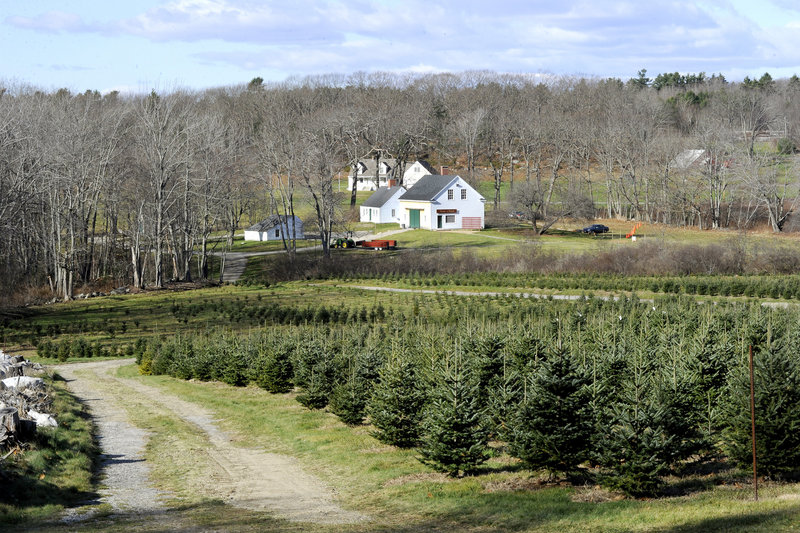 The Old Farm Christmas Place of Maine in Cape Elizabeth.
