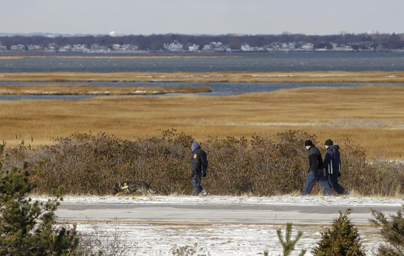 Authorities search in the brush by the side of the road at Cedar Beach, near Babylon, N.Y., on Tuesday.