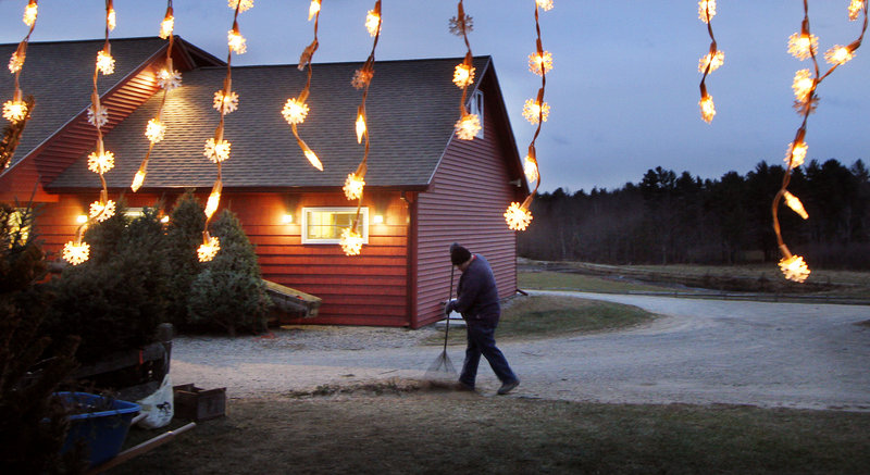Amid strings of snowflake lights, Morgan Adams sweeps the debris left from a day's worth of Christmas tree sales Monday at Chase Farms in Wells.