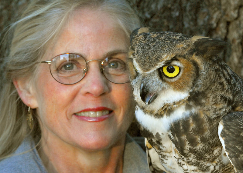 Naturalist Marcia Wilson and husband, Mark, a photographer, bring their Eyes on Owls road show to Gilsland Farm in Falmouth this weekend.