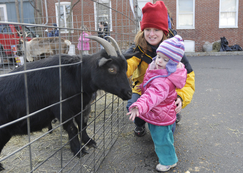 Lilliana Boucher 2, of Saco reaches out to touch a goat at the petting zoo with her mother, Amy Boucher.