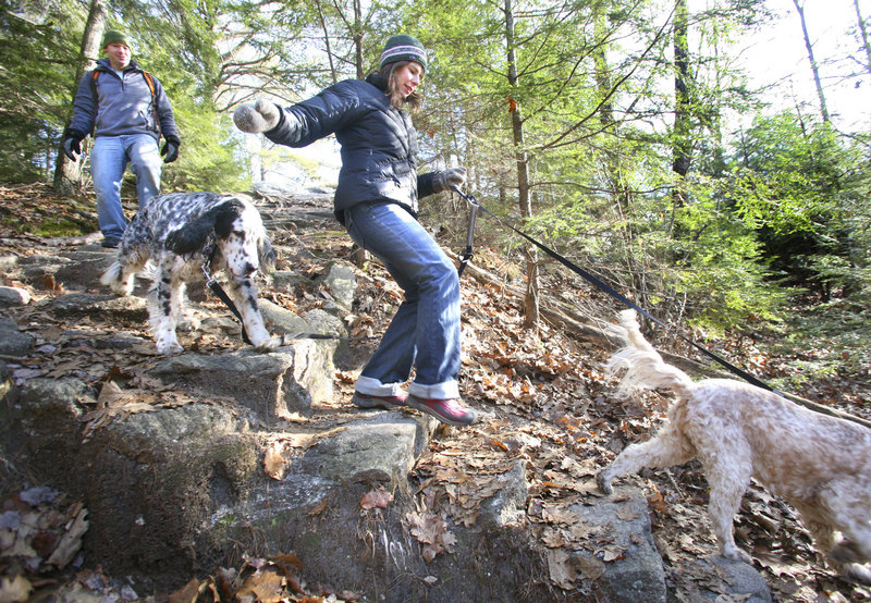 Jill and Tobin Piker of Yarmouth hike down Summit Trail Saturday with their dogs at Bradbury Mountain State Park.