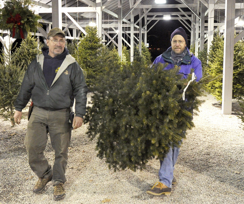 Ray Routhier, right, gets tips on selling Christmas trees from Lee Randall at O Donal's Nursery in Gorham.