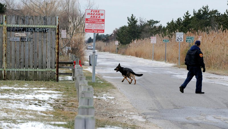 K-9 unit police use a cadaver dog in a residential area of Oak Beach on New York's Long Island today, as authorities continue scouring a 10-mile stretch of beach access road where four bodies were discovered.