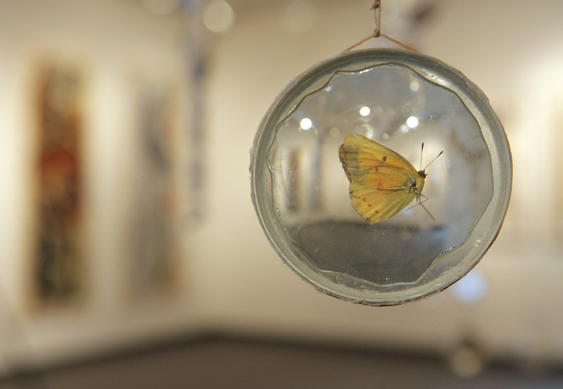 This moth preserved in glass is among the figures hanging amid an assortment of test tubes, beakers and other sparkling vessels and forms in