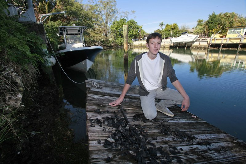 Nicolas Harrington confessed to putting the piano on the sandbar with the help of his brother and two neighbors.