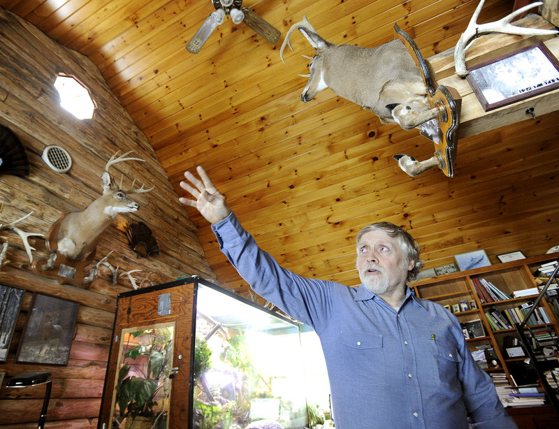 John Chapman shows two of his mounted trophy bucks. Chapman and his wife believe their feeding contributes to the good health of the deer they hunt.