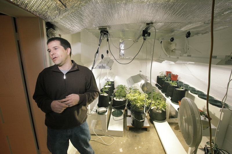 Ron Fousek of South Berwick started growing medical marijuana for a Portland patient about a year ago; he now serves five people. Until the first dispensaries open next month, caregivers such as Fousek are the only legal source of marijuana for patients, unless they grow their own.