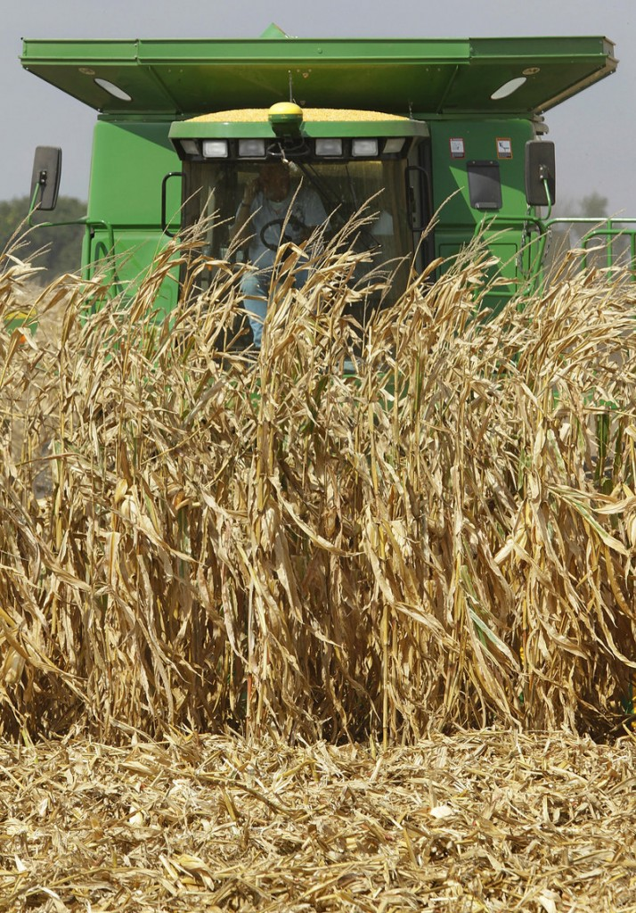 Central Illinois farmers harvest their corn crops near Monticello, Ill., last fall. U.S. reserves of corn have hit their lowest level in more than 15 years.