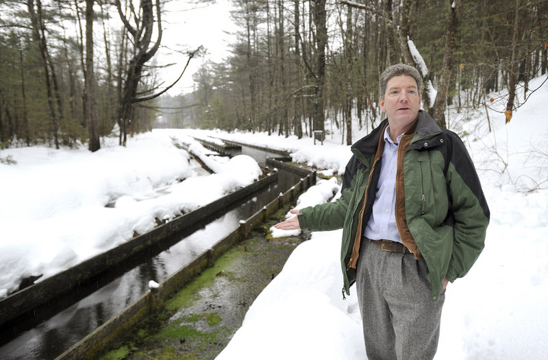 Thomas Brennan, natural resources manager, stands by a former fish hatchery where spring water bubbles to the surface at the Poland Spring property in Hollis.