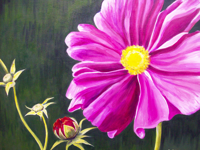 """Pink Flower"" by Sheila Clough of Waterboro."