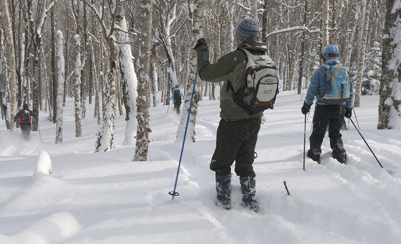 Skiers tackle the Wildcat Valley Trail in New Hampshire. The trail, for cross-country skiers only, stretches 18 kilometers from the peak of Wildcat Mountain to Jackson Village.