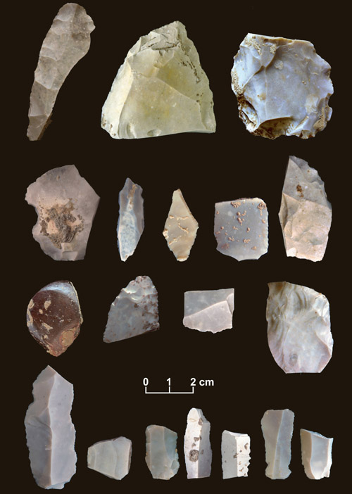 This undated handout photo provided by the journal Science shows some of the artifacts from the 15,500-year-old horizon site in Texas.