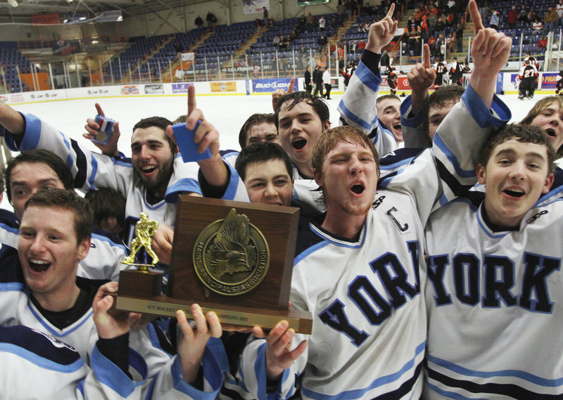 The Wildcats were big underdogs against defending champion Brewer heading into Saturday's Class B final, but they skated off first-time champions.