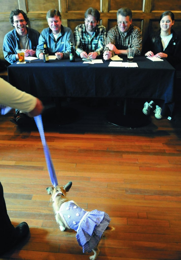 "Judges assess Stephanie Benner's Sweet Adeline on Sunday during the canine fashion show at the Old Goat Pub in Richmond. Adeline earned scores of ""8"" across the board."