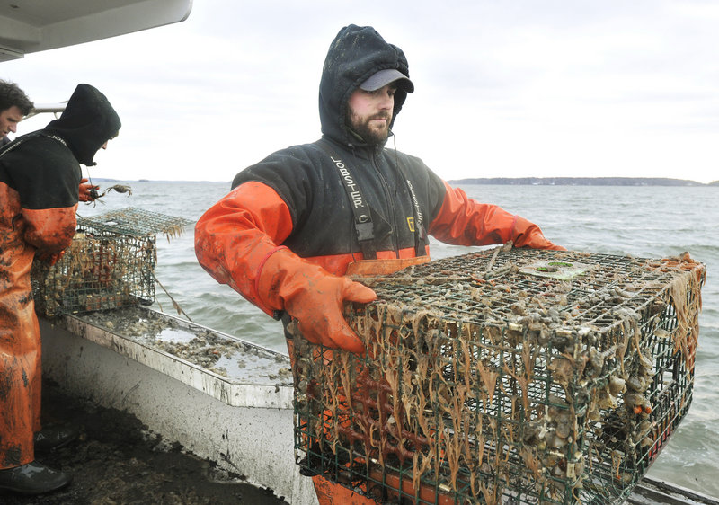 Dave Laliberte, a Lucky Catch crewman, carries a recovered lobster trap to the back of the boat. The cleanup project is funded by a $200,000 grant from money paid by a shipping company fined for dumping waste oil in the ocean off Maine.
