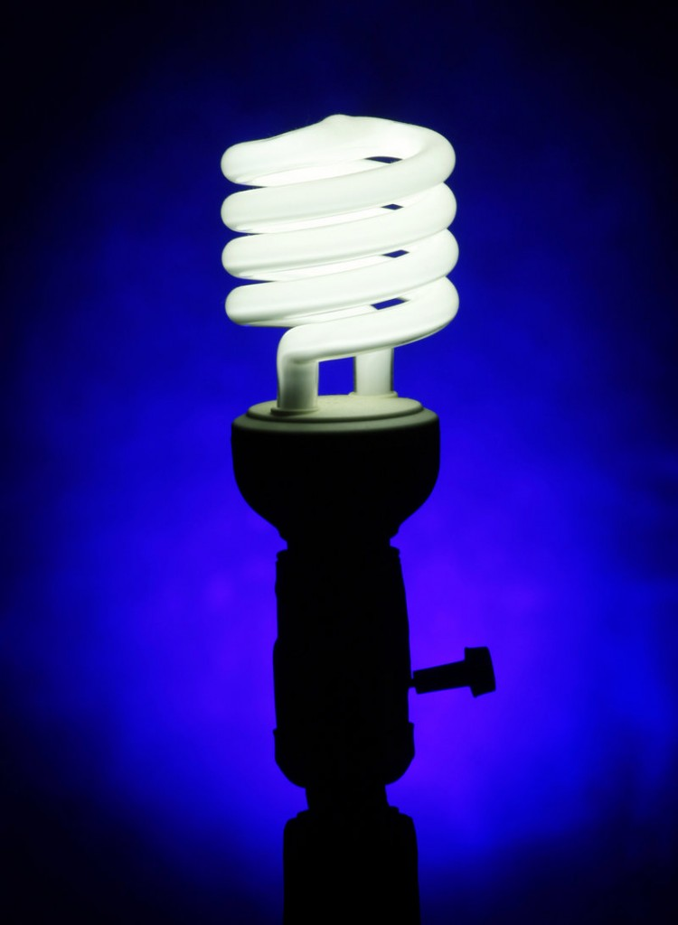 Experts say a compact fluorescent light bulb can last up to 10,000 hours.