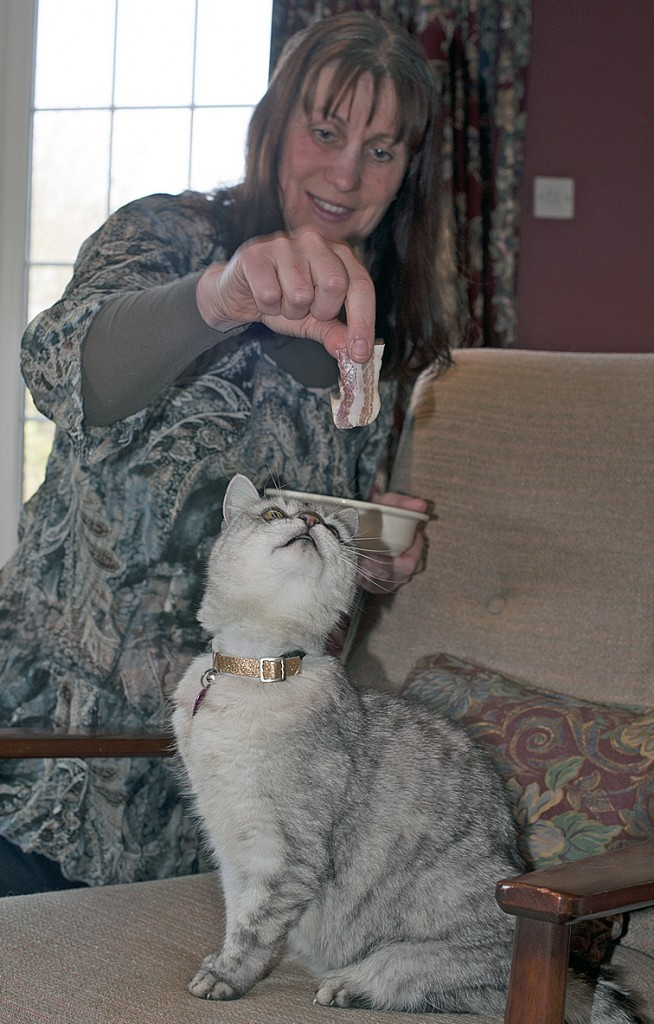 Smokey gets a treat from owner Ruth Adams. A recording of Smokey purring has been submitted to the Guinness World Records.